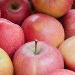 pommes de molitg
